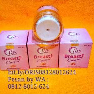 /77-1371-thickbox/orisbreastcream.jpg